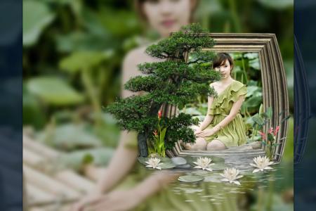 Ghép khung ảnh thiên nhiên