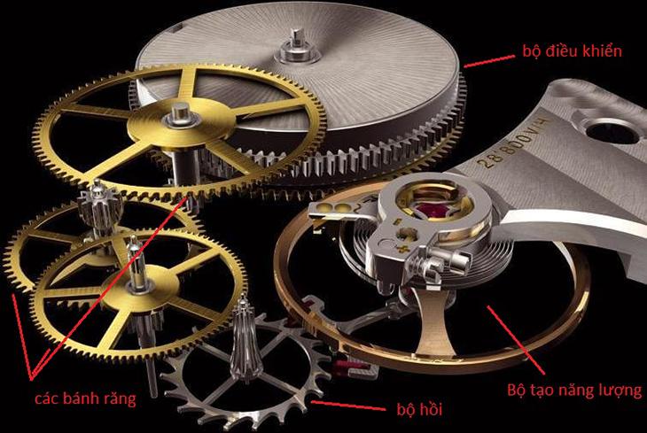 cấu tạo máy đồng hồ automatic